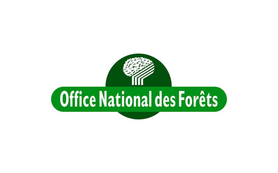 Un parcours accessible en forêt domaniale de l'Aigoual